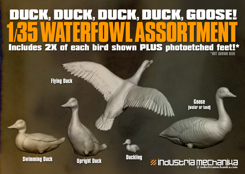 WaterfowlAssortment
