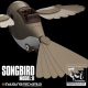 The Songbird Ornithopter (3D PRINT FILES ONLY)