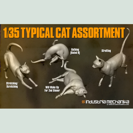 1/35 Typical Cat Assortment