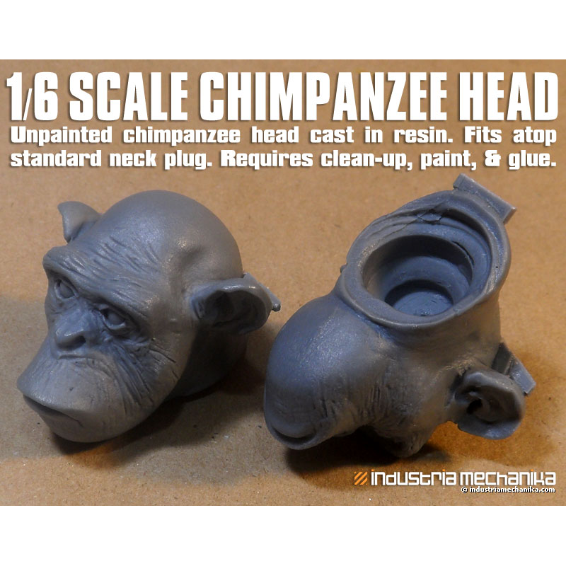 Plug Stock News >> 1/6 Chimpanzee Head